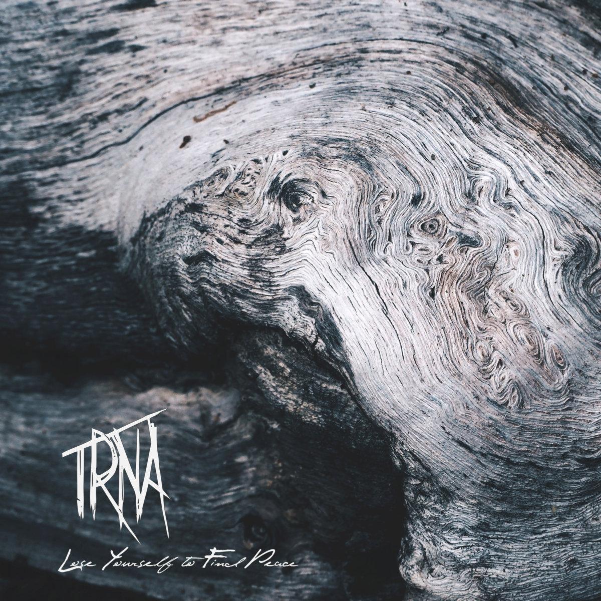 trna lose yourself